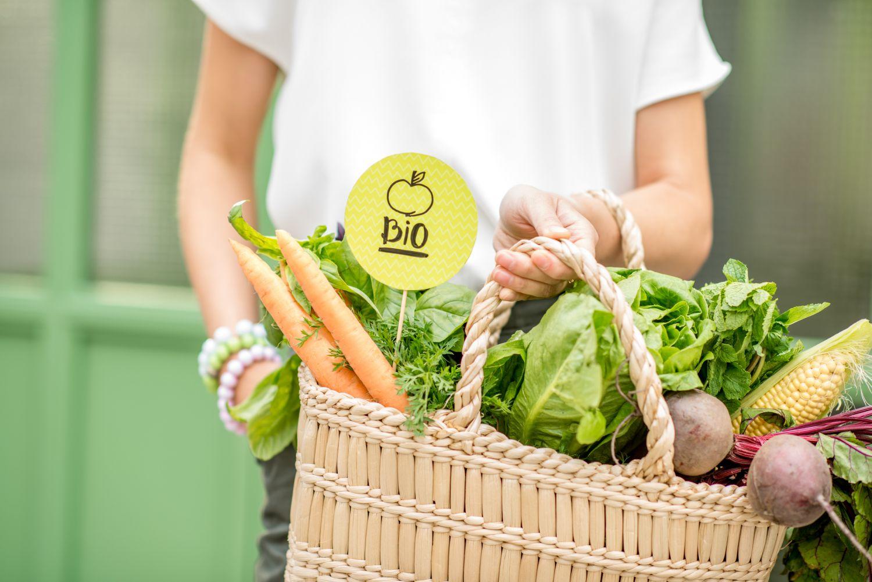 Korb mit frischem Gemüse und einem Bio-Schild. Thema: Was ist Bio?