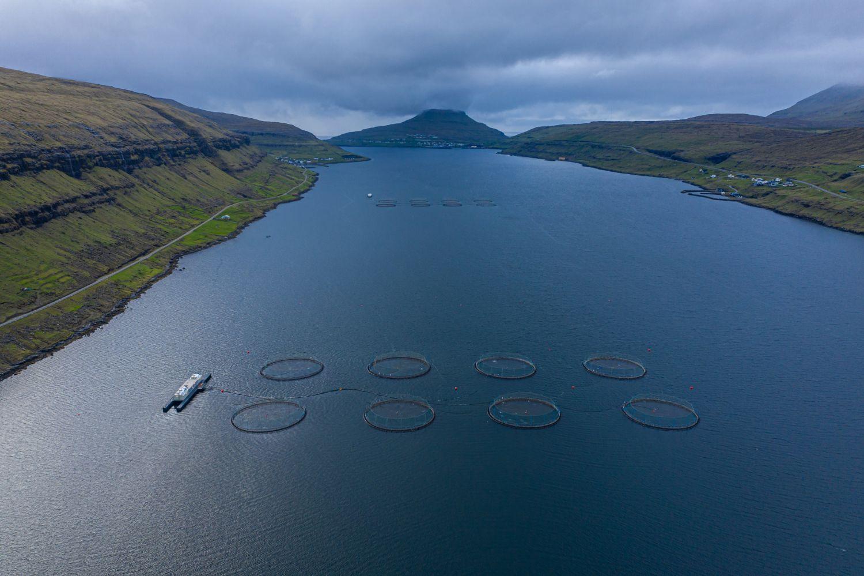 Wasser in dem Fischfang betrieben wird, umgeben von Landschaft.
