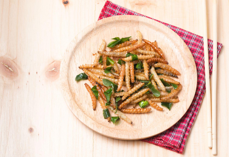Teller mit einem Gericht aus essbaren Insekten.