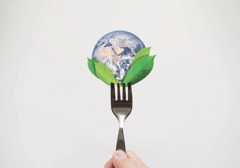 Die Weltkugel wird von einer Gabel aufgepiekt. Thema: Ernährungsgewohnheiten ändern